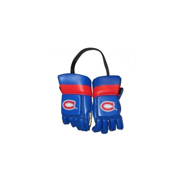Paire mini gants NHL